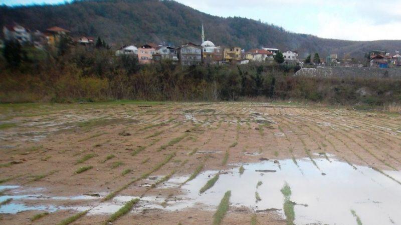 Arifiye Boğazköy Köprü istiyor.
